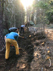 Workers digging trail