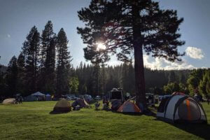 Camping on the grass at Plumas Sierra County Fairgrounds