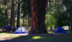 Taylorsville Campground on the edge of town and next to the scenic, fish and swim-worthy Indian Creek