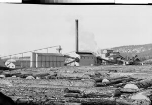 Historical photo of Collins Pine Company 1945