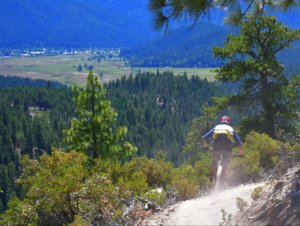 Mountain biker riding into town
