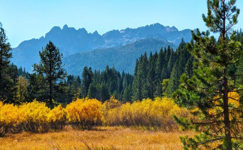Sierra Buttes mountain with fall colors