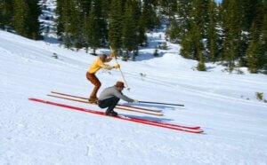 Longboard skiiers racing